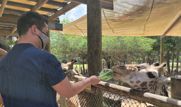 Juan Albarran Feeds a Giraffe